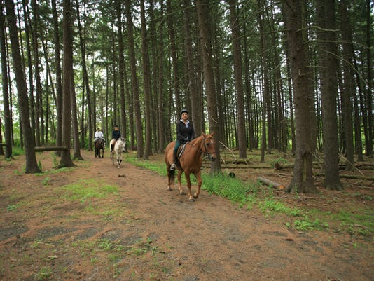 Bernards: Family & Friends Fall Introductory Horseback Ride on Nov. 25 PHOTO CAPTION