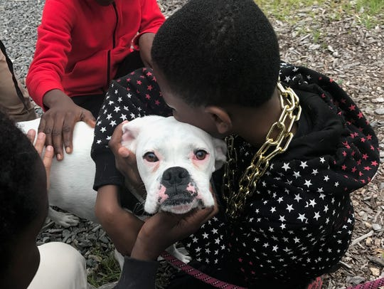 Daisey receives attention and love at a school in Newark.