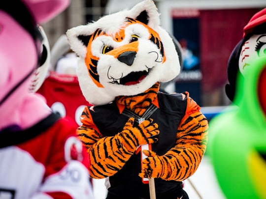 """Cincinnati Bengals Mascot """"Who Dey"""" pauses for the national anthem, before the annual Mascot Broomball Exhibition Match on the FSQ Ice Rink in downtown Cincinnati Saturday, January 14, 2017."""