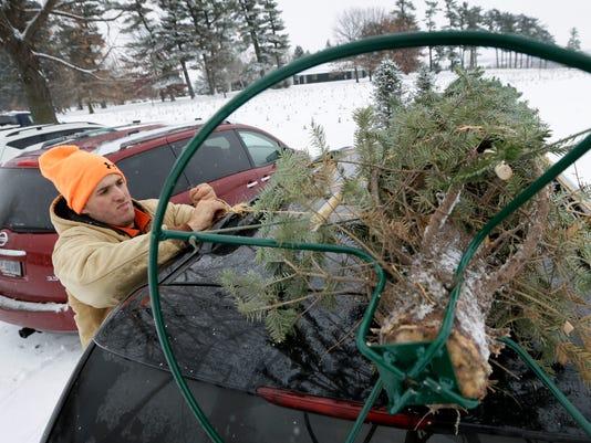 Christmas Tree Cost_Wils (2).jpg