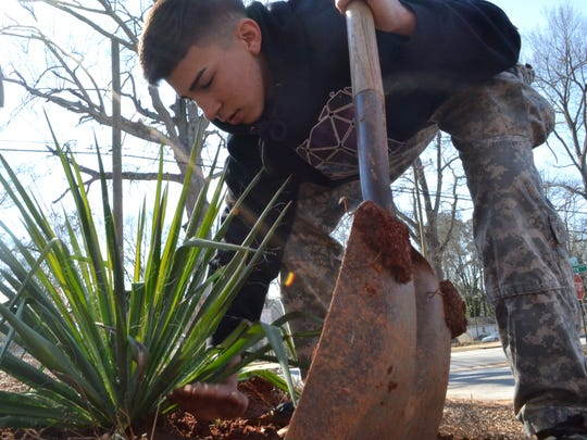 Angel Hernedez pats down the dirt around the newly planted Yucca tree on the lot next to the school which will become a greenspace.