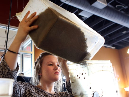 Courtney Gresbach pours freshly roasted coffee beans