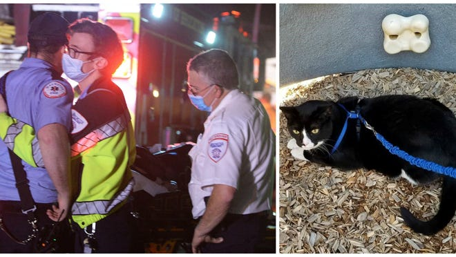 """Brewster Ambulance Paramedics comfort each other after treating a cat that died in a house fire at 120 Sheridan Street in Brockton on Saturday, Oct. 10, 2020.  Coke the cat was a """"tuxedo cat,"""" was 11 years old, and was adopted as a kitten found in a vending machine outside of a gas station in Dedham."""