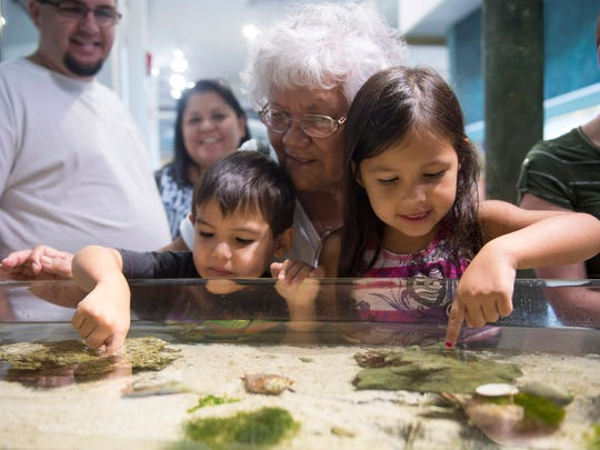 Priscilla Antonio (center) of Gallup, New Mexico, explores the animals in the touch tank with her grandchildren Wesley Rieth, 3, (right) and Mary Rieth, 5, (left), both of Stuart, in 2016 during the 15th anniversary Free Day event celebrating the The Smithsonian Marine Station's 15 years of partnership with St. Lucie County.