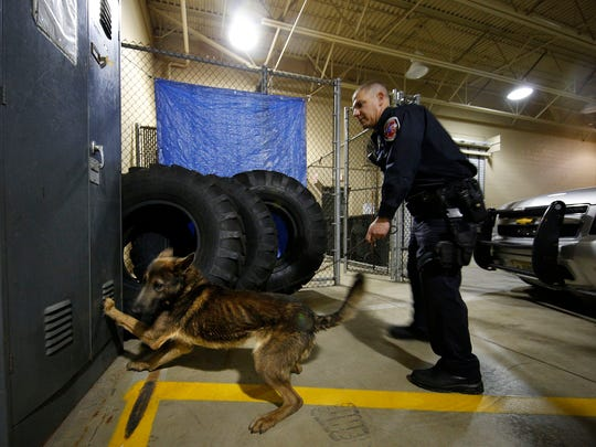 City of Oak Creek Police Officer Michael Musa trains with his new K9 partner, Stanley, in the department Wednesday, May 4, 2016, in Oak Creek. Stanley is a dual-purpose canine who preforms both patrol and narcotics search duties.
