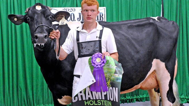 Wyatt Schlauch had the grand champion and junior champion Holstein on Friday at the Holmes County Fair Dairy Show.