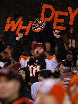 A Bengals fan cheers at Paul Brown Stadium last December.