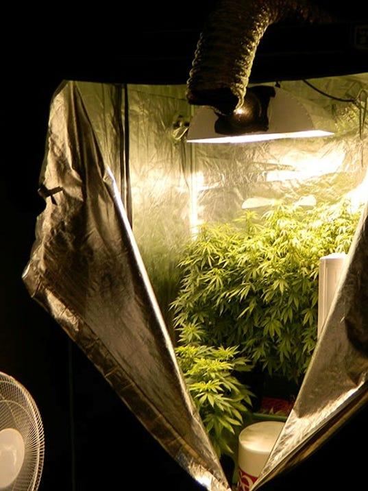 SHR 0828 DPSO marijuana growing station