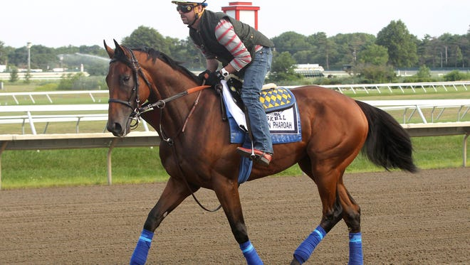 Triple Crown Champion American Pharoah gets his first look at the track at Monmouth Park in Oceanport, New Jersey on Thursday morning July 30, 2015 as he jogs with exercise rider Jorge Alvarez.  American Pharoah will be the heavy favorite for Sunday's $1,750,000 Haskell Invitational at the Jersey Shore Oval. Photo By Ryan Denver/EQUI-PHOTO