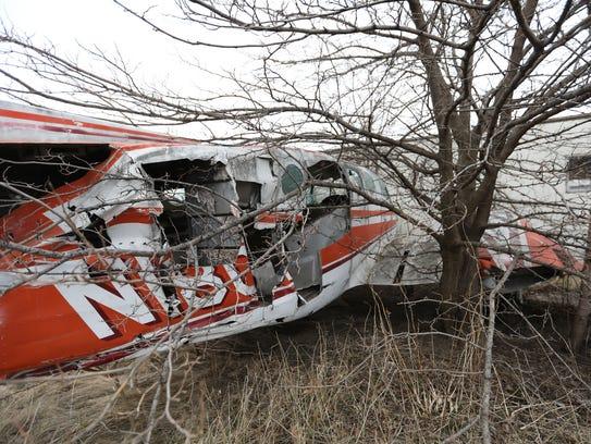 Tree branches poke through an abandoned aircraft at