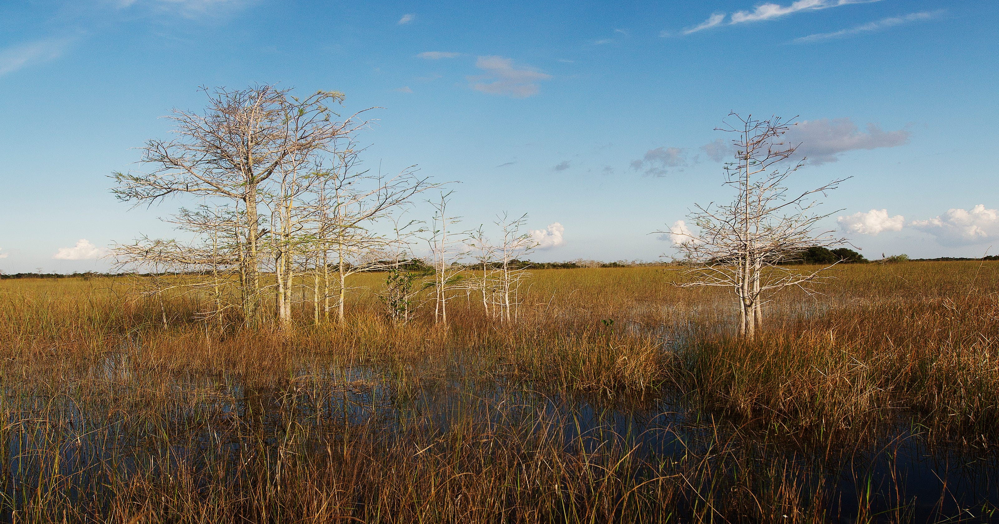Water bill authorizes $2 billion for Everglades