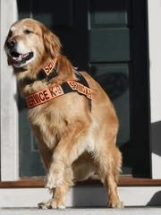 Tuesday, who died Tuesday, was a golden retriever who gained fame as a service dog and was the subject of several books written by Luis Carlos Montalvan, an Iraq War veteran who credited the dog with helping him deal with post-traumatic stress disorder.