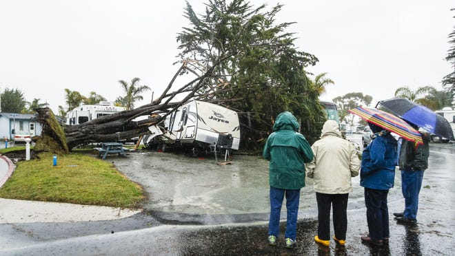 Park guests look over the damage after a powerful storm overnight toppled several trees inside the Pismo Coast Village RV Resort in Pismo Beach, Calif., Monday, March 7, 2016. Powerful thunderstorms moved swiftly through California Monday, briefly knocking out power to Los Angeles' airport and walloping the Sierra Nevada with blizzard conditions. (Joe Johnston/The Tribune (of San Luis Obispo) via AP)