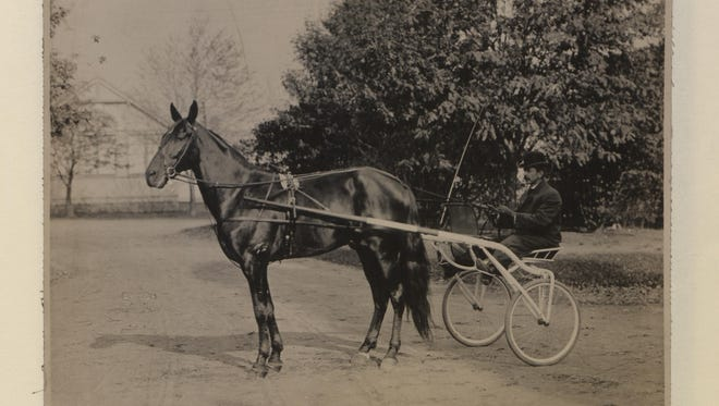 A 1905 photograph of Dan Patch, the most famous horse of his time.