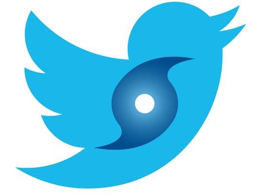 070314Twitter-Bird-Hurricane