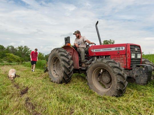 Branden Harris and Clayton Smith plant hazelnut trees