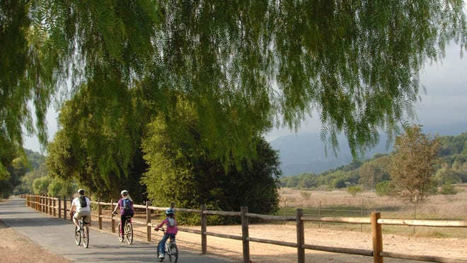 Take the Ojai Bike Trail lined by eucalyptus and pepper trees all the way to the coast.