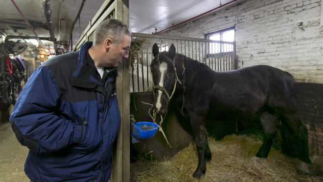 Carriage horse owner Stephen Malone looks in on his horse Tucker in his stall at New York's Clinton Stables in this Jan. 28, 2014, file photo. Malone said Monday, June 9, 2014. that there were no injuries to the horse or any people when a startled carriage horse took a jaunt around New York?s Central Park. (AP Photo/Richard Drew, File)