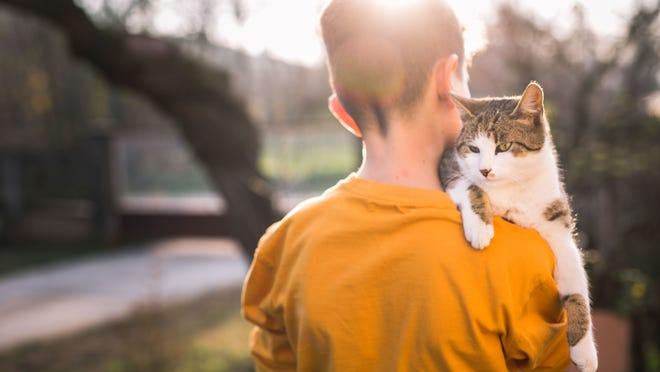 Photo of boy with domestic cat outdoors