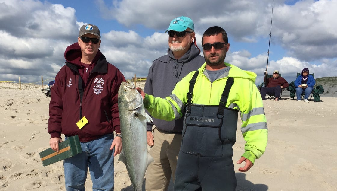 Fishing 25th governor 39 s surf fishing tourney a hit at for Nj surf fishing reports