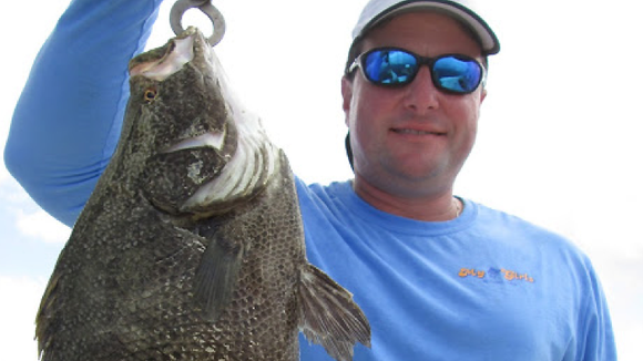 Fair weather days are producing black drum, trout and
