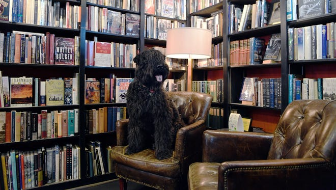 Corky, Bouvier des Flandres, hangs out at the Battery Park Champagne Bar and Book Exchange, which allows furry friends inside and dog treat scattered among the many book shelves.