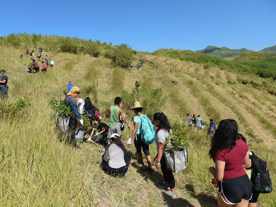 The Manell Watershed Reforestation Planting Event welcomed tree-planting participants to help reduce the threat of erosion in Merizo on Oct. 21, 2017.