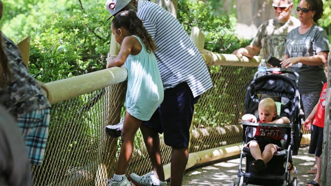 Jerry Douglas of Hyde Park and daughter, Mia, 6, at the Gorilla World exhibit after it reopened Tuesday after safety changes at the Cincinnati Zoo. Douglas said he barely noticed it was different.