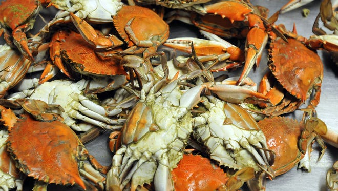 Clayton's Crab Co. in Rockledge typically hosts an annual outdoor seafood festival.