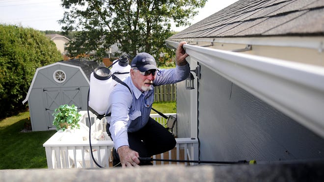 Exterminator for Godfather's Exterminating Jeron Winter climbs on the roof of a home in Sartell on Saturday to check for yellowjackets that might be hiding in the corners of the roof.
