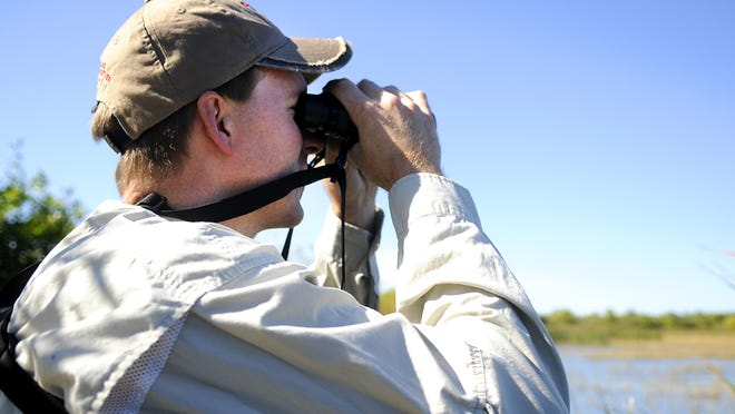 Nick Snavely, Sauk Rapids-based assistant wildlife manager with the Minnesota Department of Natural Resources, looks for different birds at the Sand Prairie Wildlife Management Area on Wednesday.