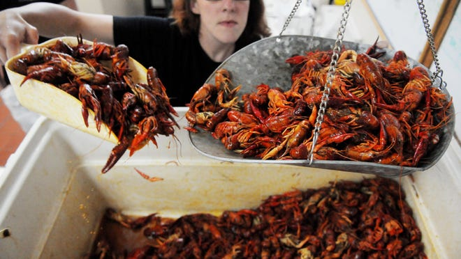 Crawfish is weighed for a customer at Shaver's Catering.