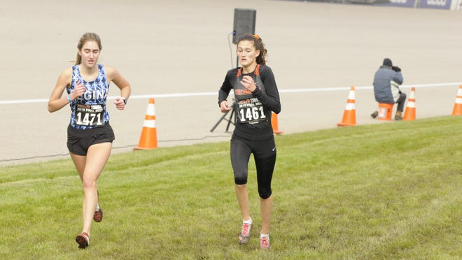 Tecumseh's Kaitlin Knape runs during the Division 2 state meet at Michigan International Speedway in 2019.