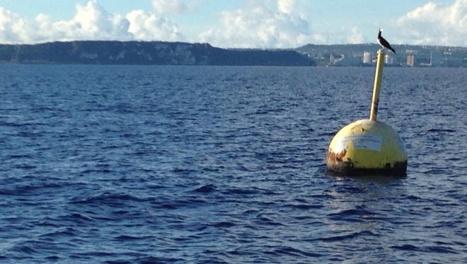 A bird sits atop a fish aggregating device, anchored in the waters west of Two Lovers' Point. There are 14 of these deep-water buoys, intended to improve fishing by providing shelter for small bait fish.