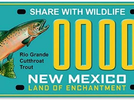 636445284806620994-license-plate.jpg
