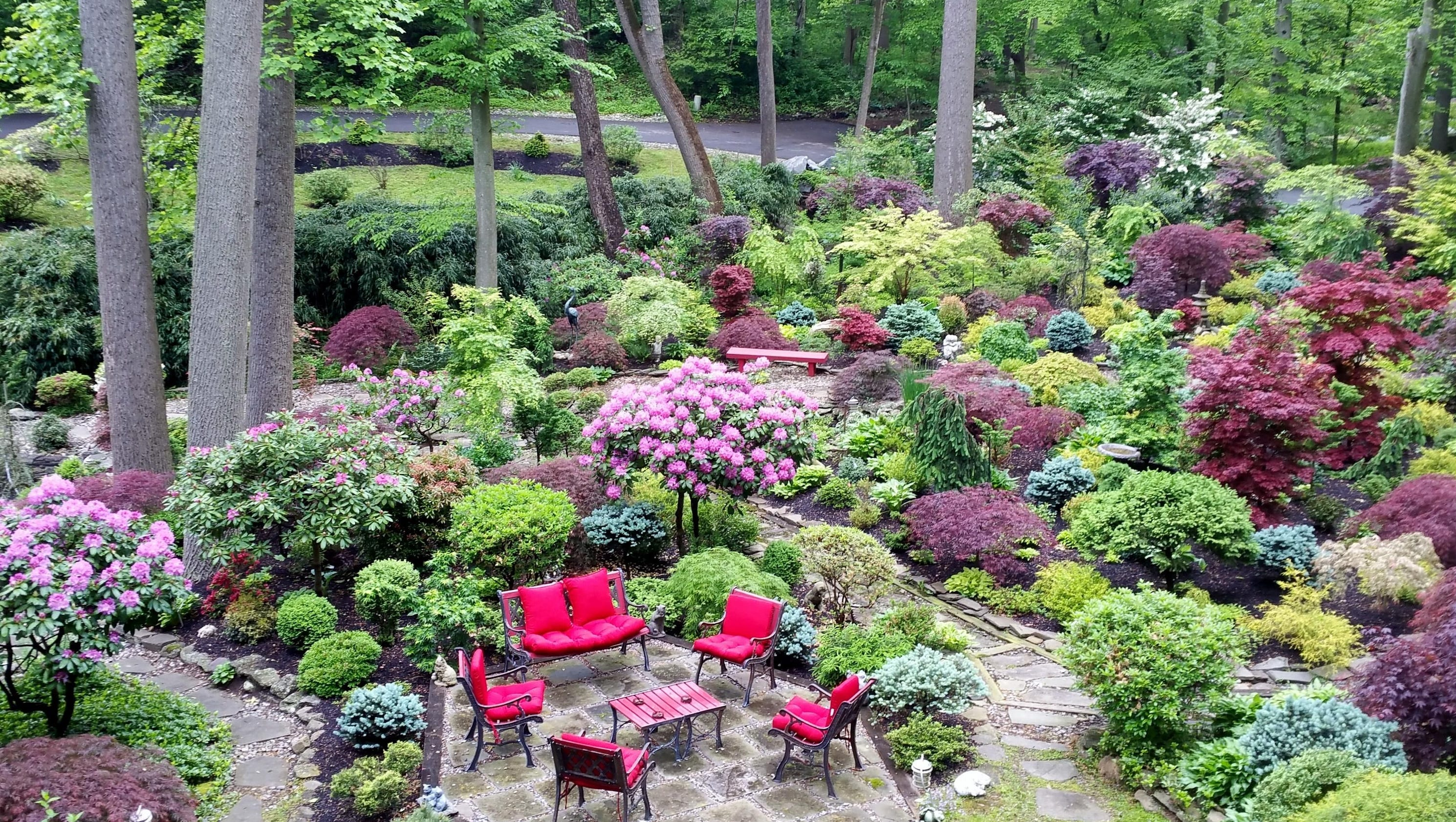 Image Result For Chens Garden