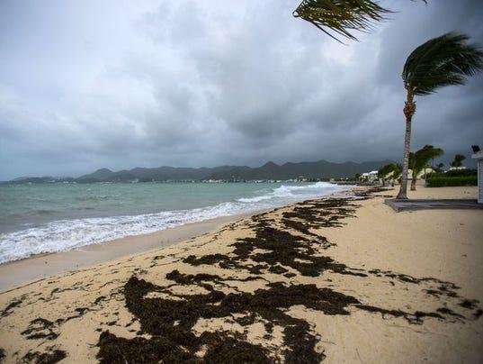 636403090047431985-Irma.jpg