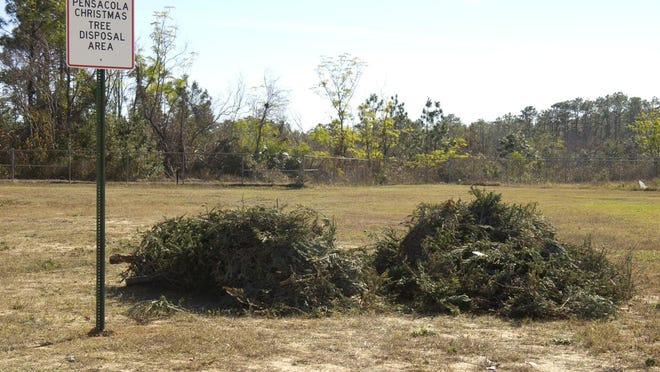 Before taking trees to designated sites, be sure to remove all ornaments, tinsel and tree stands.