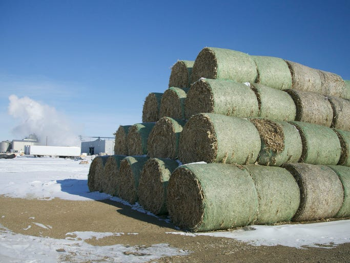 Bales of cellulosic field refuse sit piled up in the yard outside the Poet grain and cellulosic ethanol production facility on Tuesday, Feb. 11, 2014, in Emmetsburg, Iowa.