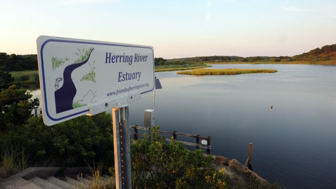 The Cape Cod Commission has approved the first phase of a project to return higher tidal flow into portions of the Herring River estuary in Wellfleet.