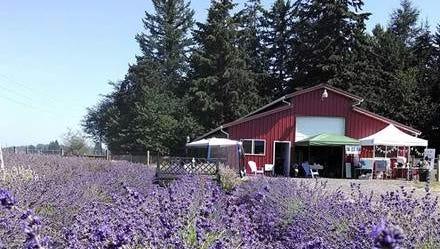 Hope Haven Family Farm