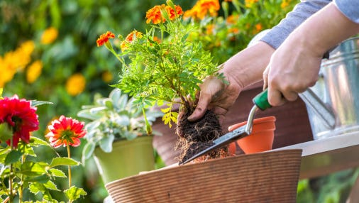 Wood County Master Gardener Volunteers will hold Fall Gardening Seminar Oct. 17 at UW-Marshfield/Wood County campus.