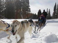 Abby Leatherman, a tour guide with the Durango Dog Ranch, unloads a dog sled from a truck on Tuesday at the Purgatory Resort kennel north of Durango, Colo.