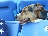 Champ Stewart watches his ball go over the fence for a home run in the first inning Thursday at NYSEG Stadium.