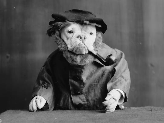 Dressing up dogs as human characters was popular in the early 20th century.