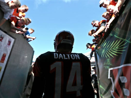 Bengals quarterback Andy Dalton steps through the tunnel