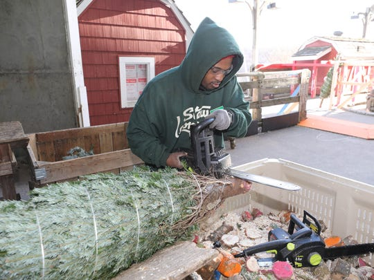Shavar Sapp uses a chain saw to trim some branches and make a fresh cut on a Christmas tree, at the Stew Leonard's store in Yonkers, Dec. 6, 2017.