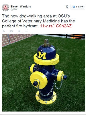 The Michigan fire hydrant at Ohio State's College of Veterinary Medicine