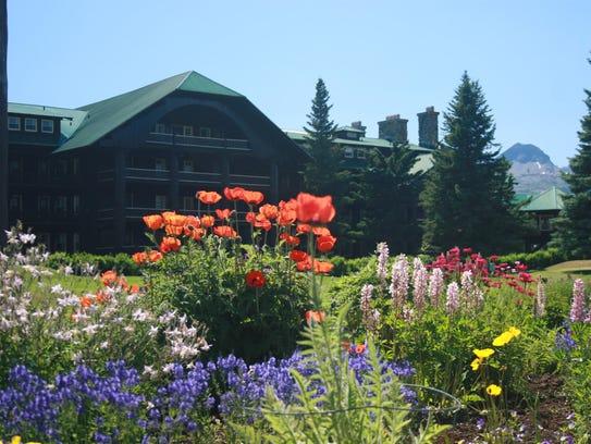 Glacier 39 S Gardens Displays Stun Delight Lodge Visitors