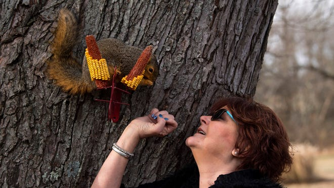 Cindy Dye of Oakland City, Ind., greets Baby, a red squirrel she raised from infancy, Wednesday morning. Her son, Blaine Dye, found the critter fallen from its nest behind mom's hair salon in July and now it calls the Dye's backyard its home.